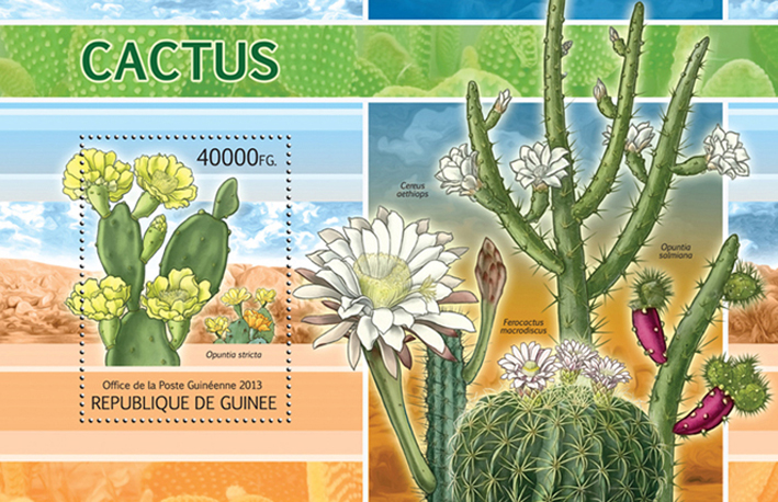 Cactus - Issue of Guinée postage stamps