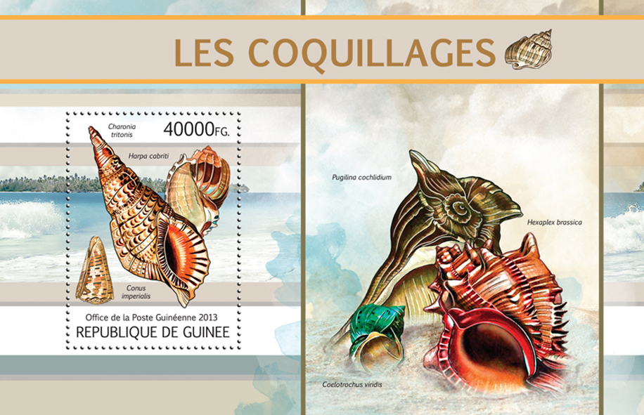 Shells - Issue of Guinée postage stamps