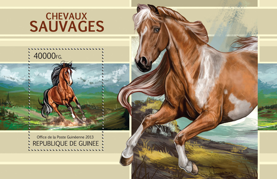 Wild Horses - Issue of Guinée postage stamps