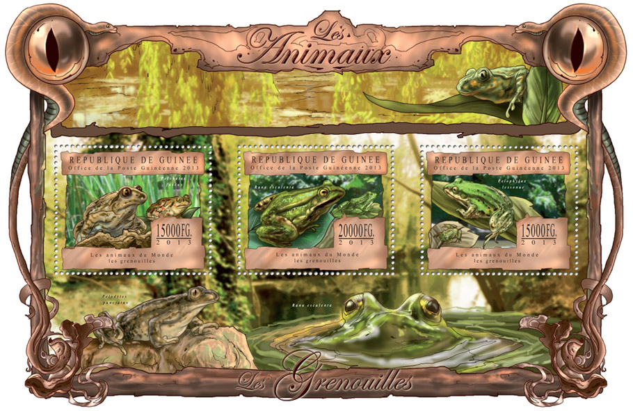 Frogs - Issue of Guinée postage stamps