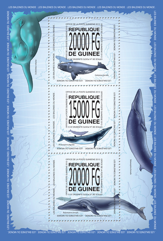 Whales - Issue of Guinée postage stamps