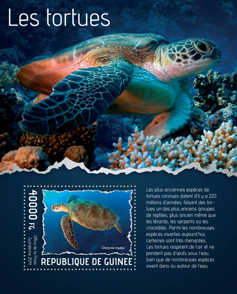 Turtles - Issue of Guinée postage stamps