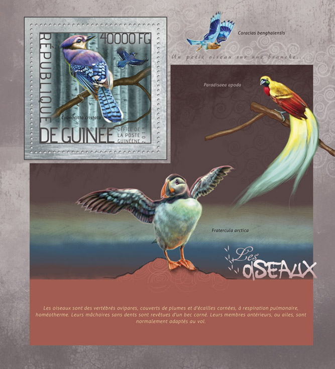 Birds  - Issue of Guinée postage stamps