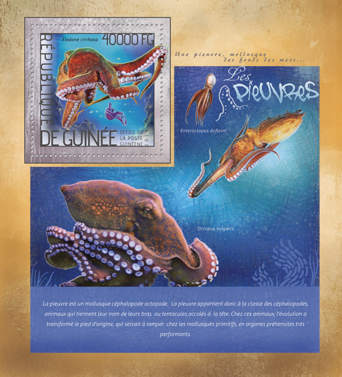Octopuses  - Issue of Guinée postage stamps