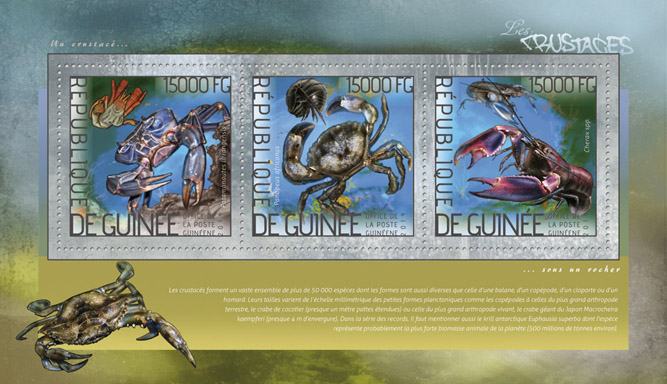 Shellfishes  - Issue of Guinée postage stamps