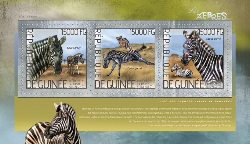 Zebras - Issue of Guinée postage stamps