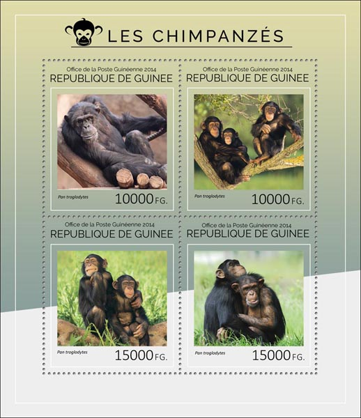 Chimpanzees - Issue of Guinée postage stamps