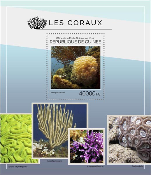 Corals - Issue of Guinée postage stamps