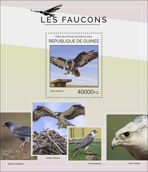 Hawks - Issue of Guinée postage stamps