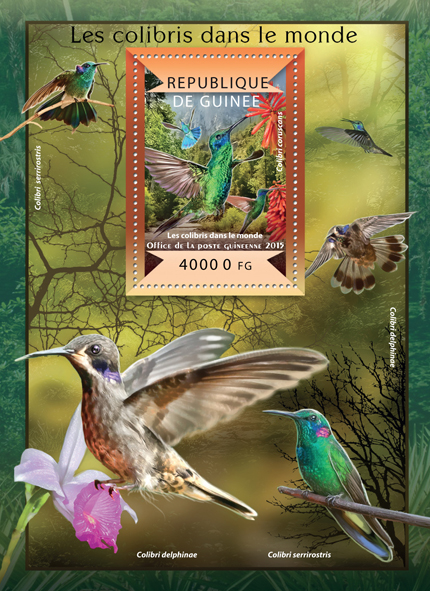 Colibris - Issue of Guinée postage stamps
