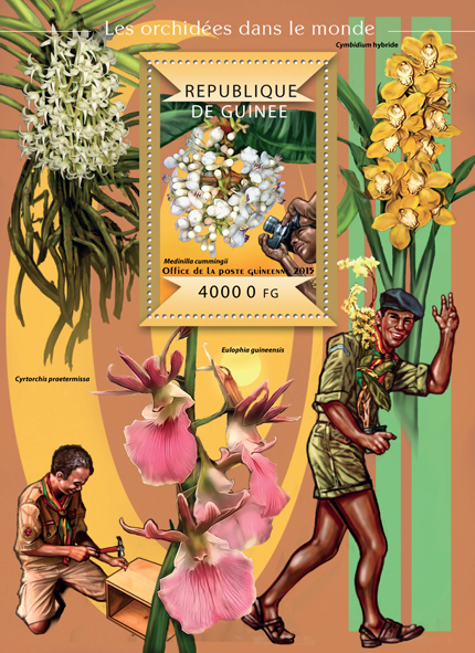 Orchids of the World - Issue of Guinée postage stamps
