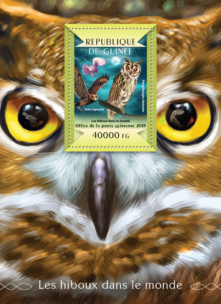 Owls of the World - Issue of Guinée postage stamps