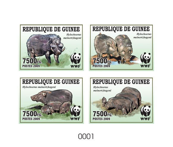 WWF Wild boar De Luxe sheet with 4v - Issue of Guinée postage stamps