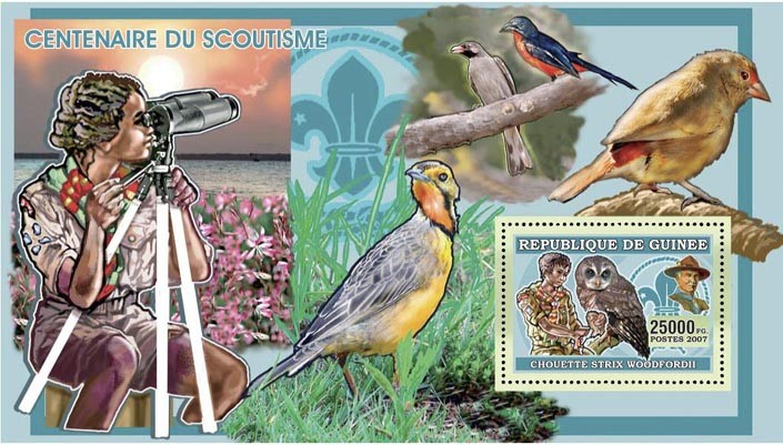 SCOUTS - OWLS - BIRDS 25 000 FG - Issue of Guinée postage stamps