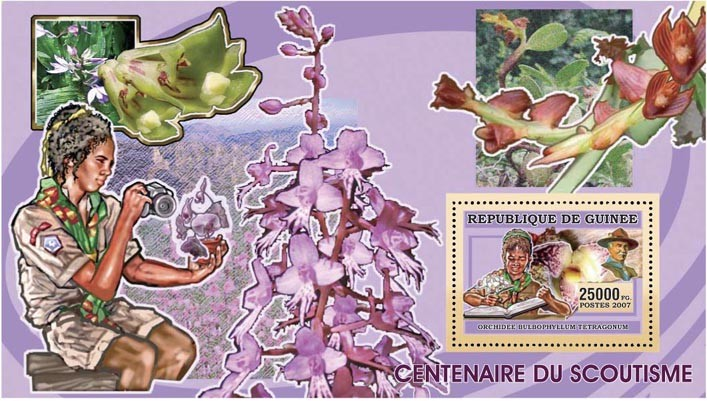 SCOUTS-ORCHIDS-CACTUS s/s - 25 000 FG - Issue of Guinée postage stamps