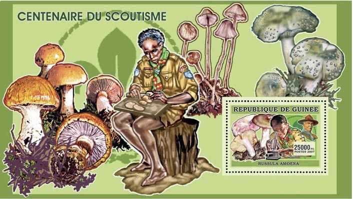 SCOUTS - MUSHROOMS s/s - 25 000 FG - Issue of Guinée postage stamps