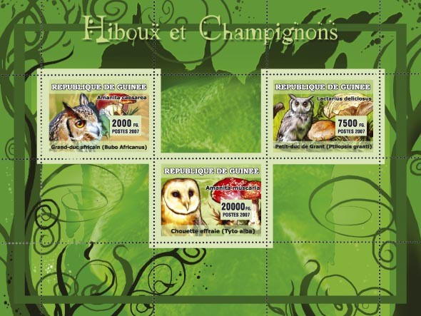 Owls / Hiboux, Mushrooms / Champignons - Issue of Guinée postage stamps