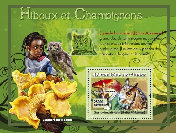 Bubo africanus / Grand-duc africain, Cantharellus cibarius - Issue of Guinée postage stamps
