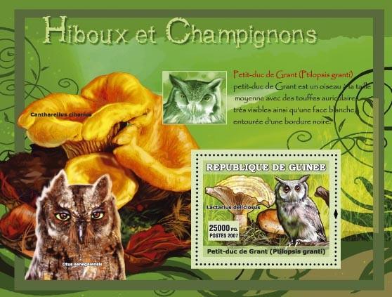 Ptilopsis grandi / Petit-duc de Grant, Cantharellus cibarius - Issue of Guinée postage stamps