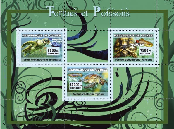 Turtles / Tortues, Fish / Poissons - Issue of Guinée postage stamps