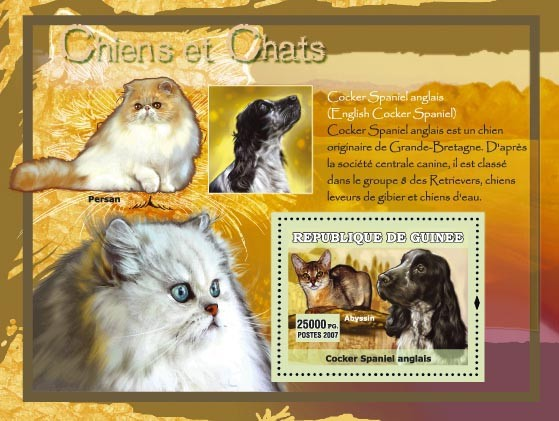 Cocker Spaniel Anglais / English - Issue of Guinée postage stamps