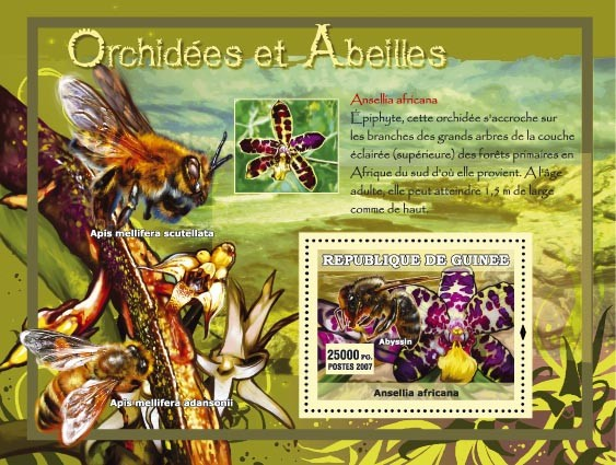 Ansellia africana - Issue of Guinée postage stamps
