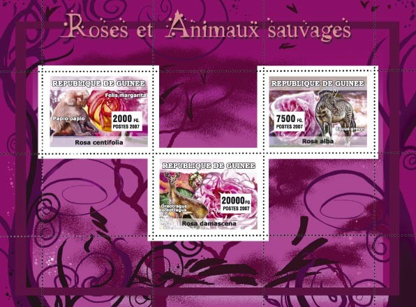 Roses / Animaux Sauvages / Wild Animals - Issue of Guinée postage stamps