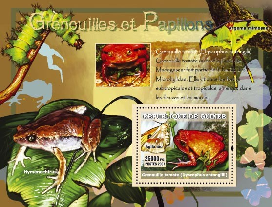 Himenochirus / Argema Mimosae - Issue of Guinée postage stamps