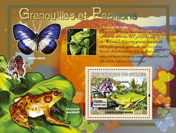 Cacyreus Marshalli / Danis danis - Issue of Guinée postage stamps
