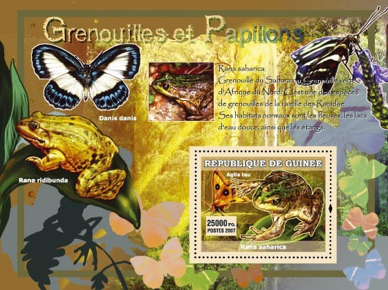 Rana Ridibunda / Danis danis - Issue of Guinée postage stamps