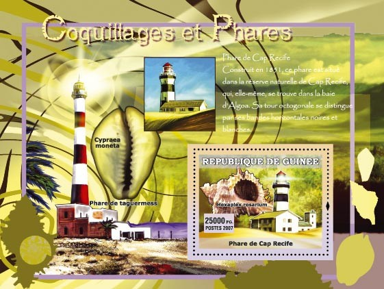 Cypraea Moneta / Phare de taguermess - Issue of Guinée postage stamps