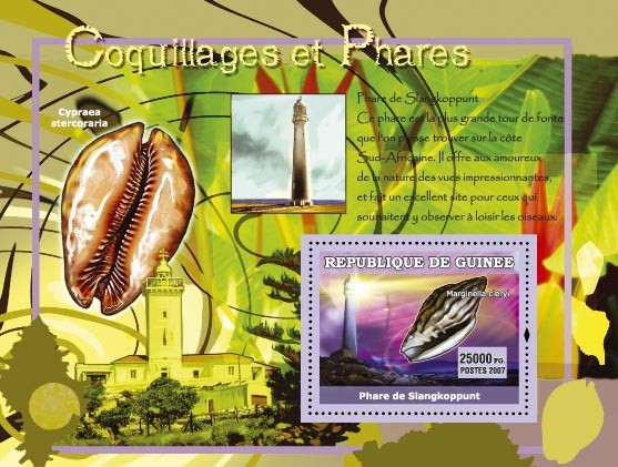 Cypraea stercoraria / Phare de Slangkoppunt - Issue of Guinée postage stamps