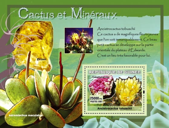 Ancistrocactus tobuschi / Zircon - Issue of Guinée postage stamps