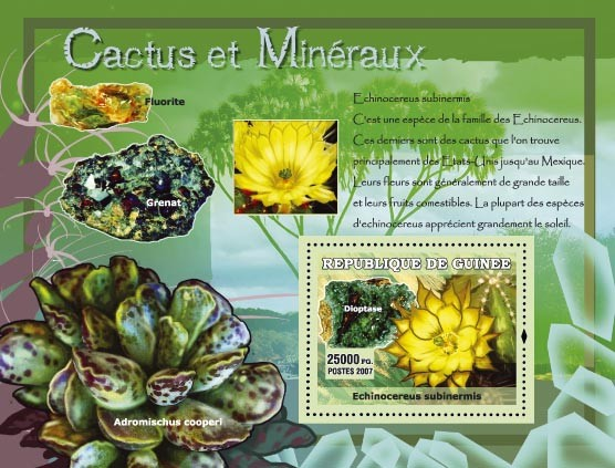 Echinocereus subinermia / Grenat, Fluorite - Issue of Guinée postage stamps