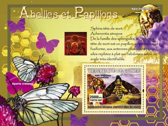 Spinx t???ᅠ?ツ??te de morte / Aporai crataegi - Issue of Guinée postage stamps