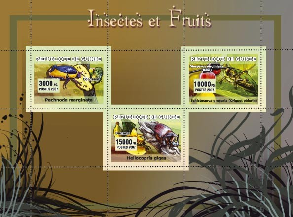 Insectes et Fruits / Insects and Fruits 3v - Issue of Guinée postage stamps