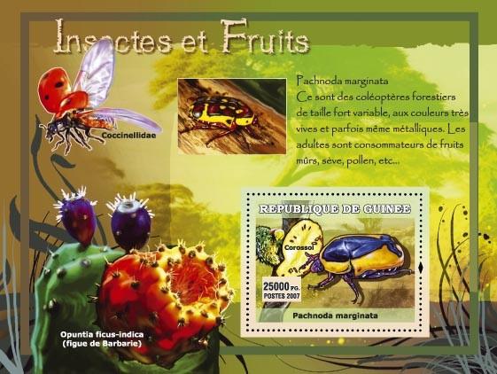 Pachnoda marginata / Opuntia ficus-indica - Issue of Guinée postage stamps