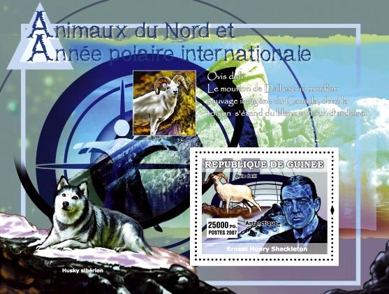 Husky siberien / Ovis dalli / E. H. Shackleton - Issue of Guinée postage stamps