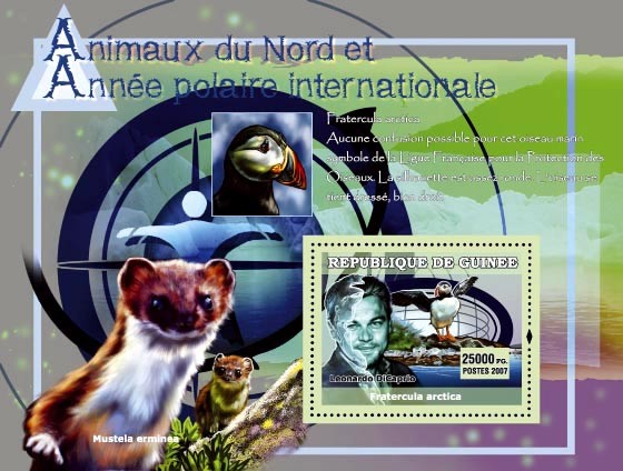 Pratercula arctica (bird) / Leondardo Di Caprio - Issue of Guinée postage stamps