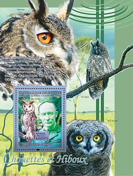 Owls & Robert Baden Powell, Asio Clamator (Bubo Africanus, Asio Stygius, Bubo bubo) - Issue of Guinée postage stamps