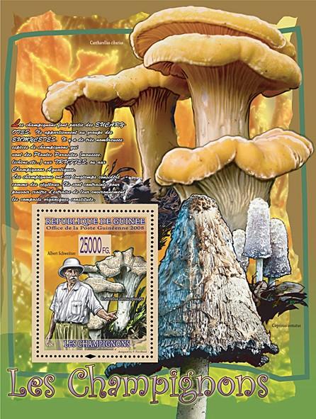 Craterellus cornucopioides & Albert Schweitzer (Coprinus Comatus, Cantherellus Cibarius) - Issue of Guinée postage stamps