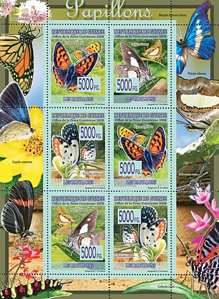 FAUNA - Butterflies - Issue of Guinée postage stamps