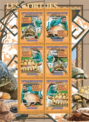 FAUNA  Turtles - Issue of Guinée postage stamps