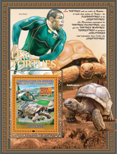Turtles, Geochelone gigantea & Rugby - Issue of Guinée postage stamps