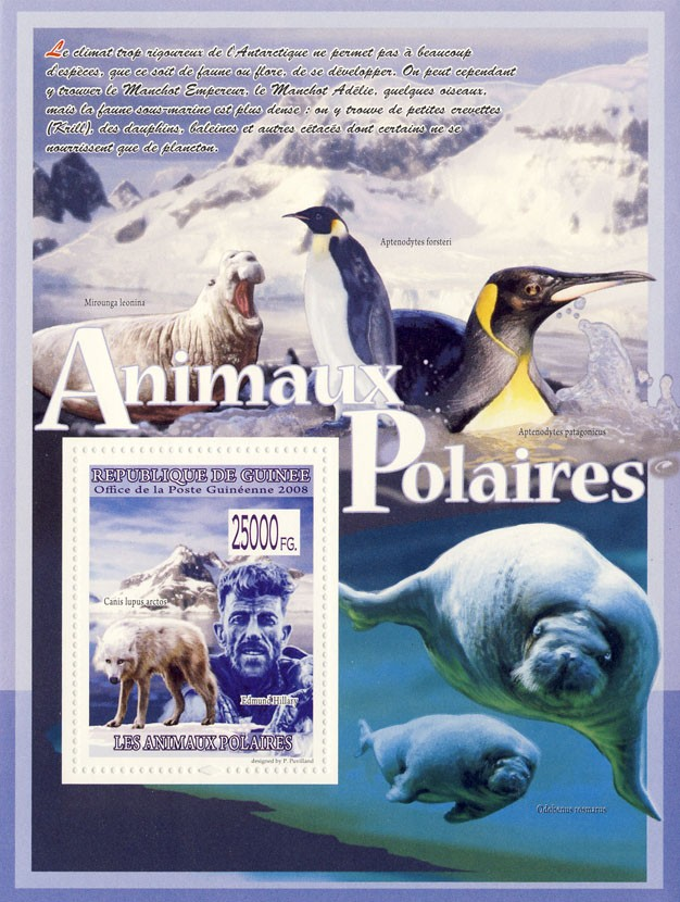 Polar wolf, E.Hillary (Sea Lions, Penguins) - Issue of Guinée postage stamps