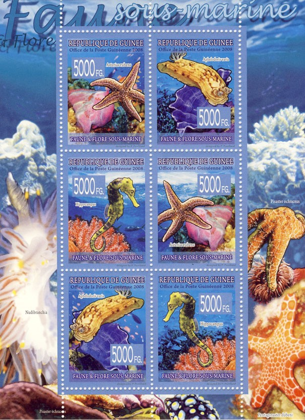 FAUNA  Underwater Fauna - Issue of Guinée postage stamps
