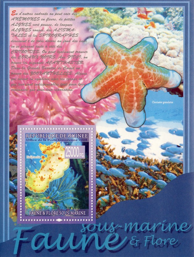 Underwater fauna, Nudibranchia, Crinoidea (Fishes) - Issue of Guinée postage stamps