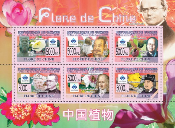 FLORA OF CHINA  S. Kuo, S.Shi, W.Zhengvi ?�� Flowers - Issue of Guinée postage stamps