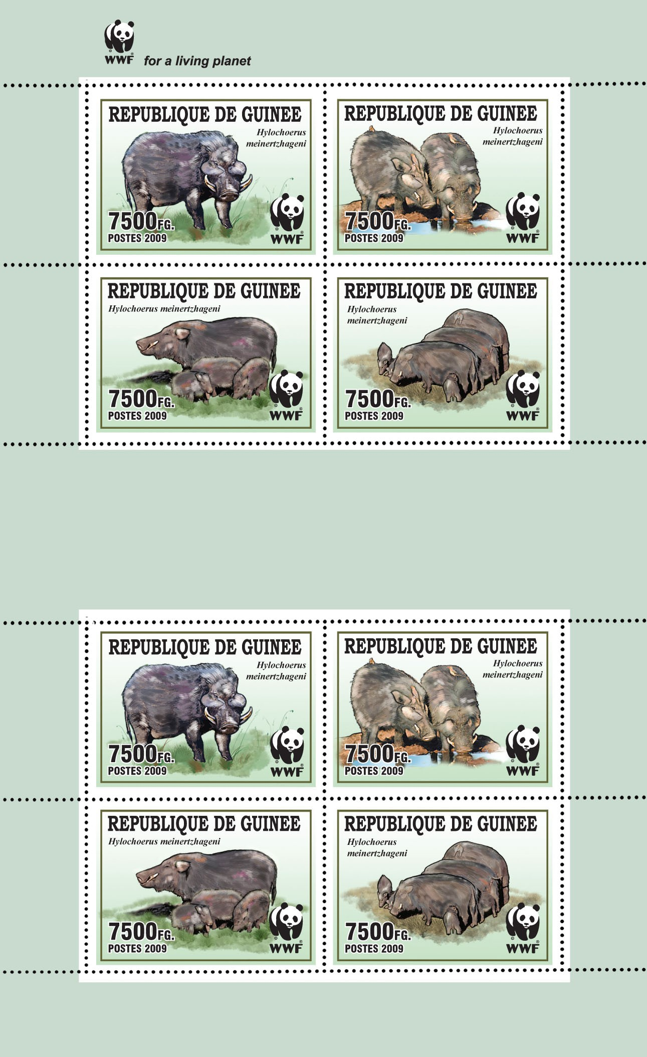 Wild boar / WWF Sheet of 2 sets 8v x 7500 FG - Issue of Guinée postage stamps