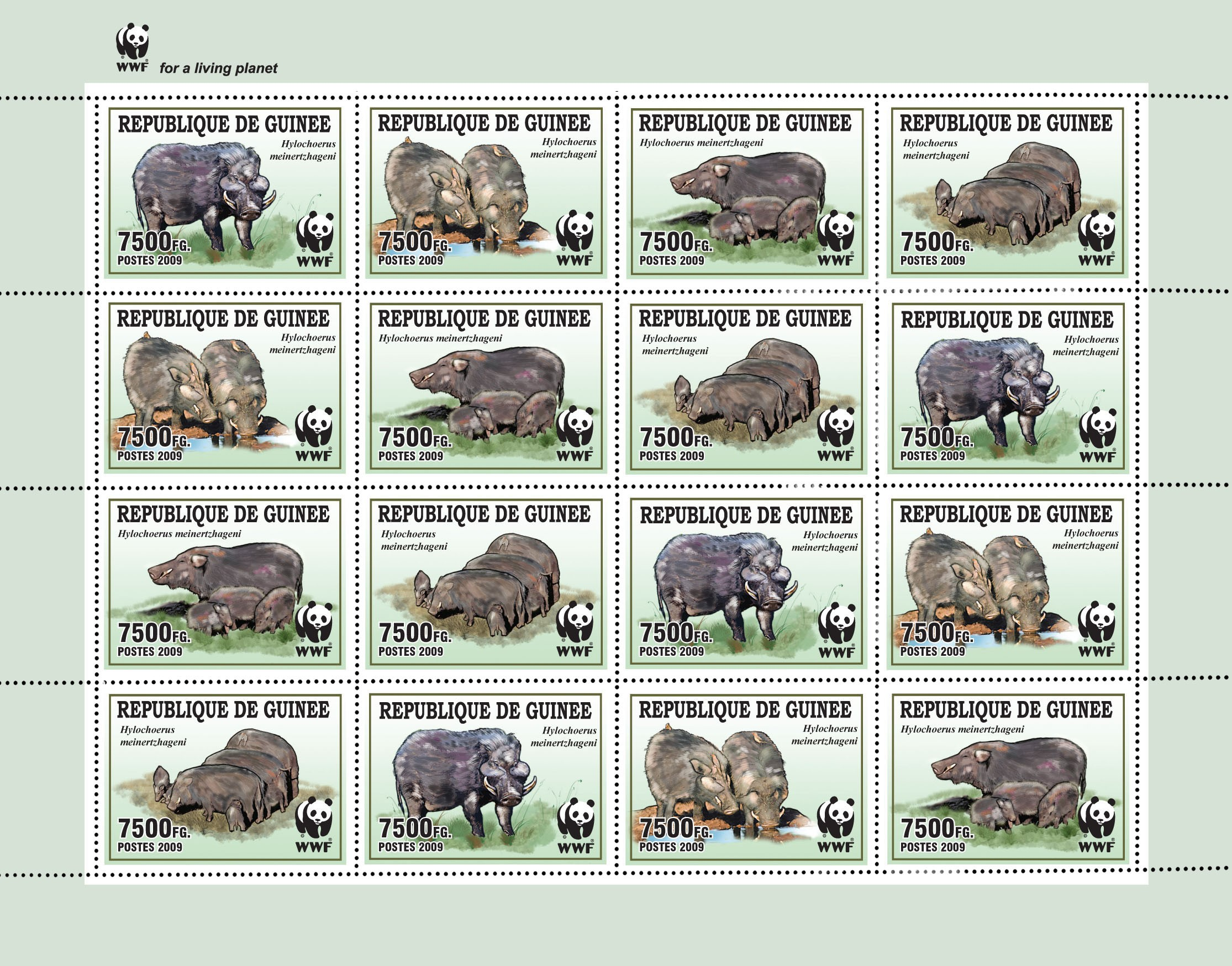 Wild boar / WWF Sheet of 4 sets 16v x 7500 FG - Issue of Guinée postage stamps